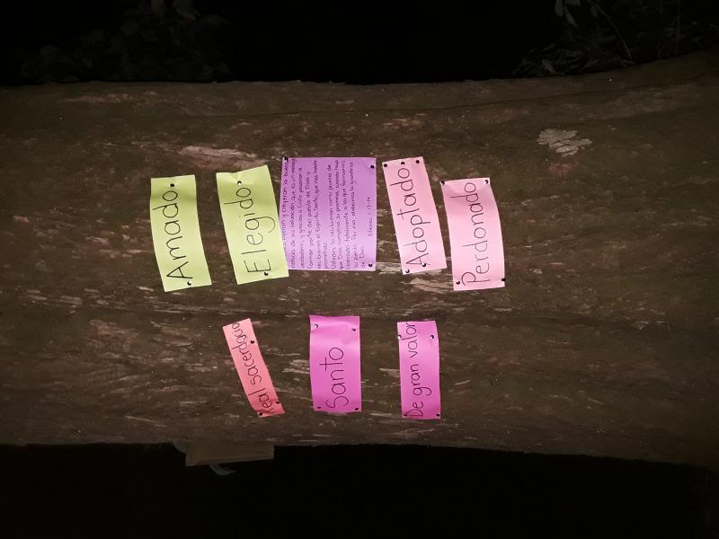 Identity Tree